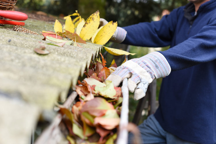 Gutter Maintenance Tips to Protect Your Home This Autumn